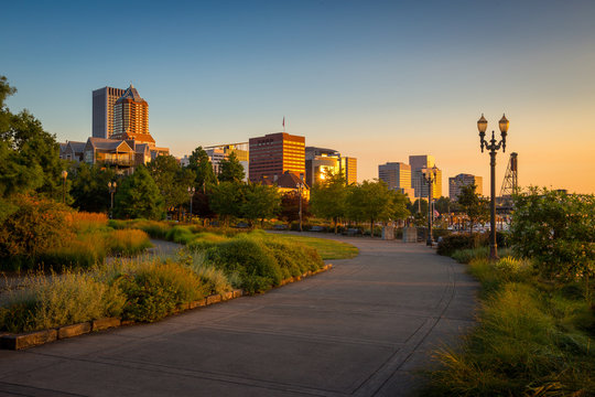 South Waterfront Park in Downtown Portland, Oregon, USA during beautiful sunrise with yellow glow and clear blue sky