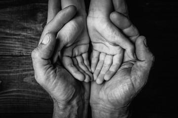Adult hands holding kid hands Fotomurales