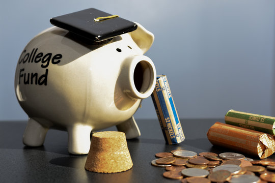 Piggy Bank with Loose Change and Coin Wraps