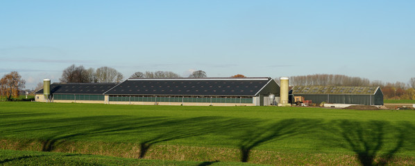 A large cow shed and farm in the Netherlands.