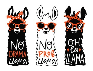 Vector llama set in red sunglass and headband. No prob llama, No drama llama, Oh la llama motivational and inspirational quotes.