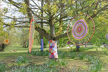 Yarn bomb circles in a park