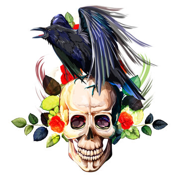 Vintage illustration of raven on skull with flowers roses background. Hand drawn, vector - stock.