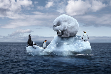 Photo sur Toile Ours Blanc polar bear sits on a melting glacier