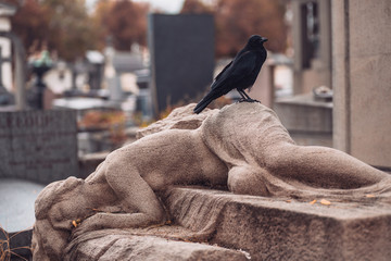 Pere Lachaise - Black big raven on a gravestone in a cemetery - mystical view