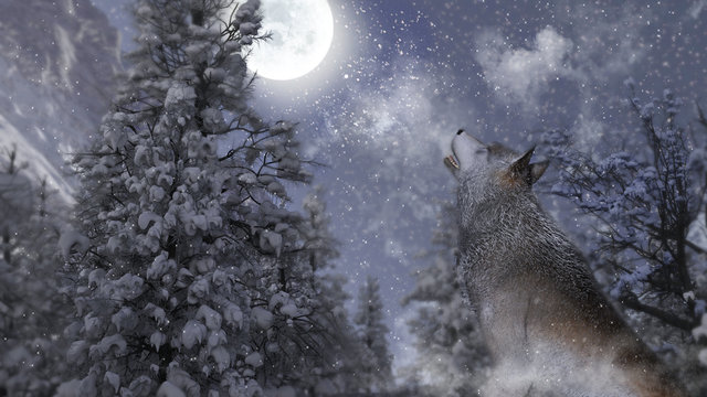 Wolf singing on moon in wintry forest. 3d illustration.