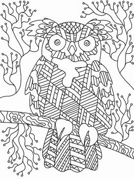Cartoon detailed night wild owl coloring book page for adults and kids. Black and white line art illustration. Zenart night bird picture.