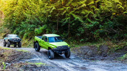 British Columbia, Canada. Off-road monster truck in the forest. Wall mural