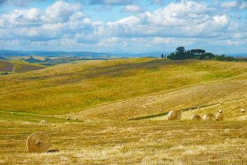 Rural landscape of Tuscany