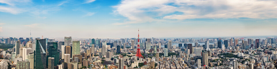 Fototapete - Cityscape of Tokyo skyline, panorama aerial skyscrapers view of office building and downtown in Tokyo on a sunny day. Japan, Asia.