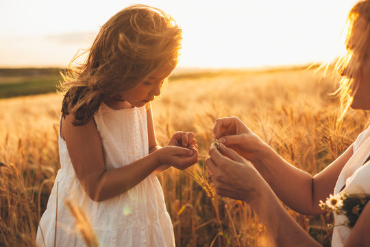 Lovely little girl holding wheat grain with her mother in a field of wheat against sunset.
