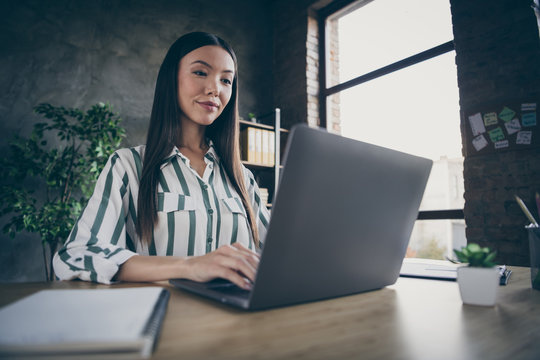 Photo of satisfied pleased cheerful business woman looking into screen of laptop with interest improving her skills of software creating