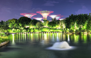 Singapore, Marina bay at night - Super tree with fountain in garden