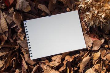 秋の日のスケッチブック