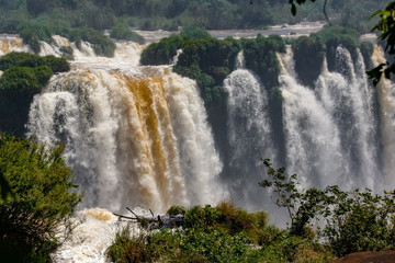 View to powerful waterfalls with lush green vegetation, Iguazu Falls, Argentina