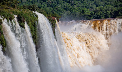 Close up view of powerful Iguazu Falls with white, grey and brown colored water and green vegetation in sunlight