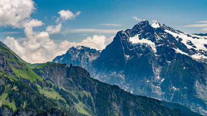 Switzerland, Panoramic view on green Alps and Wetterhorn from Schynige Platte