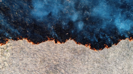 Foto op Canvas Vuur Forest and field fire. Dry grass burns, natural disaster. Aerial view. View vertically down, the camera hangs motionless.