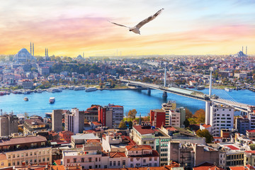 Halic Metro Bridge and the Suleymaniye, view on the Fatih district of Istanbul, Turkey