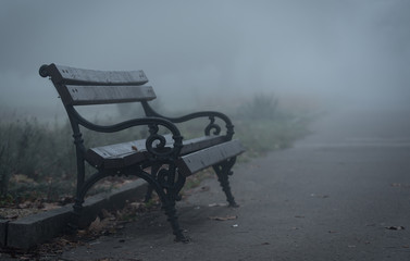 Wooden bench in the park a foggy day