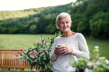 Senior woman with coffee standing outdoors on a terrace in summer. Fotomurales