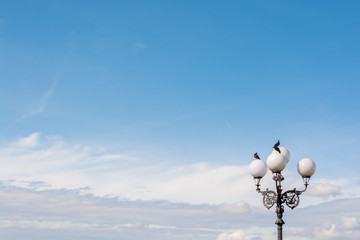 Classical street light with pigeons sitting on the tops with blue sky on background Fotomurales