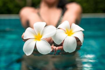 Woman in a pool showing 2 beautiful flowers. Frangipani flowers