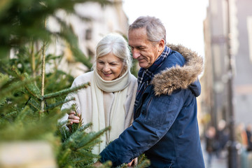 Senior couple choosing Christmas tree at Christmas market