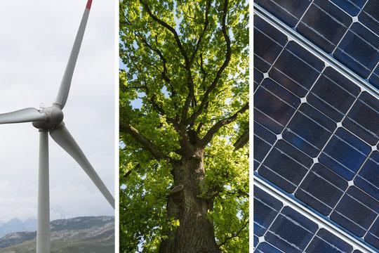 Nachhaltige Energie Collage - Windkraftwerk mit Solarpanel und Baum als erneuerbare ressource Symbol