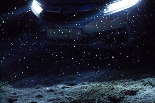 snowflakes during snowfall lit with light from car headlights at night on a road