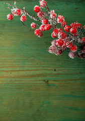 frozen branch with berries on wooden background