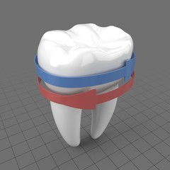 Stylized molar tooth with arrows 1