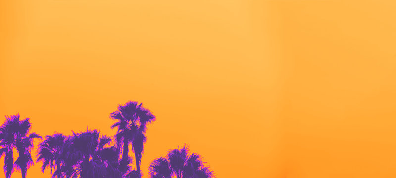 Beautiful sunset of Los Angeles palm trees synth wave style