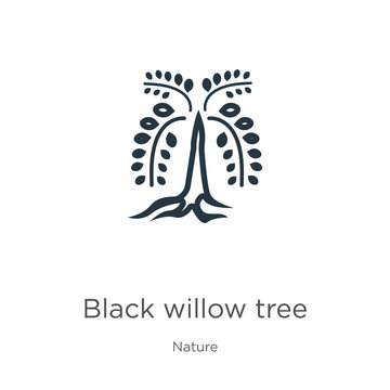 Black willow tree icon. Thin linear black willow tree outline icon isolated on white background from nature collection. Line vector black willow tree sign, symbol for web and mobile