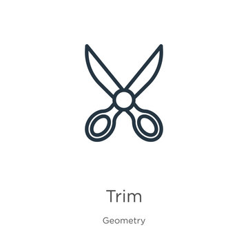 Trim icon. Thin linear trim outline icon isolated on white background from geometry collection. Line vector trim sign, symbol for web and mobile