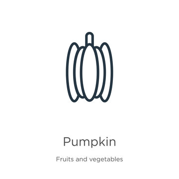 Pumpkin icon. Thin linear pumpkin outline icon isolated on white background from fruits collection. Line vector pumpkin sign, symbol for web and mobile