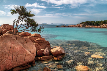 Capticcioli beach in Costa Smeralda, Sardinia, Italy. Rocks and mediterranean pine trees on the shore, sea with azure turquoise crystal clear water. Holidays, beaches in Sardinia.