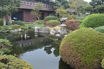 Japanese Landcapes