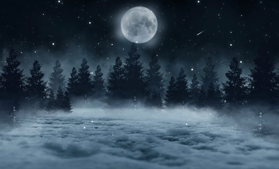 Dark abstract winter forest background. Wooden floor, snow, fog. Dark night background in the forest with moonlight. Night view, magic Fotomurales