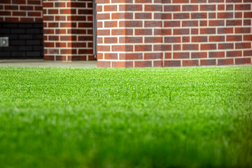 A neatly trimmed green lawn in the backyard of a private home.