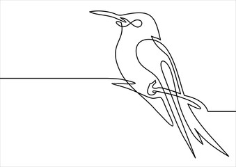 Continuous line bird.vector illustration. One line drawing. Concept for logo, card, banner, poster, flyer