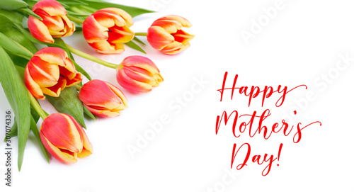 """Text """"Happy Mother's day"""" on white background. Bunch of red and yellow stripy tulips in the corner, isolated on white, panoramic composition."""