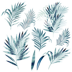 Big vector collection of palm leaves in watercolor style