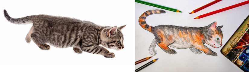 a watercolor picture of little cat with pencils and colors and model photo