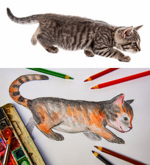 a watercolor picture of little cat with pencils and colors with model photo