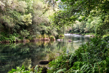 Eume river in the Fragas do Eume park