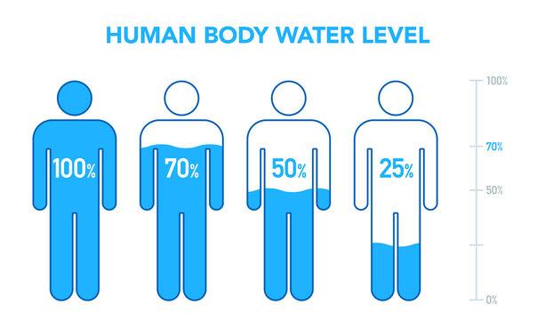 人体と水分パーセンテージの図