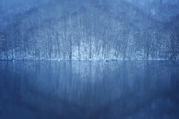 曲沢沼の雪景色