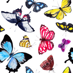 Butterflies. Seamless background with exotic butterfly. Watercolor