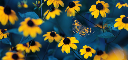 Tropical butterfly and small yellow bright summer flowers on a background of blue foliage in a fairy garden. Macro artistic image.